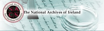 The National Archives of Ireland Case Study Image.jpg